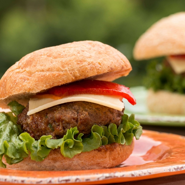 Picture of Hearty Paprika Burger